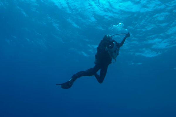 Picture of Deep Diving