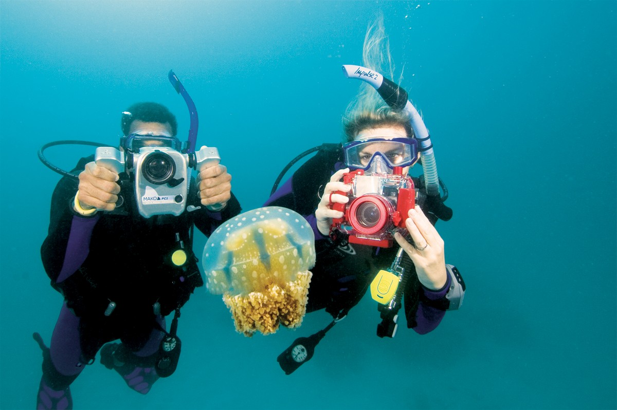 Picture of Underwater Digital Photography